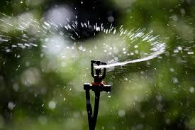 همه موجودات زنده نیاز به آب  دارند.